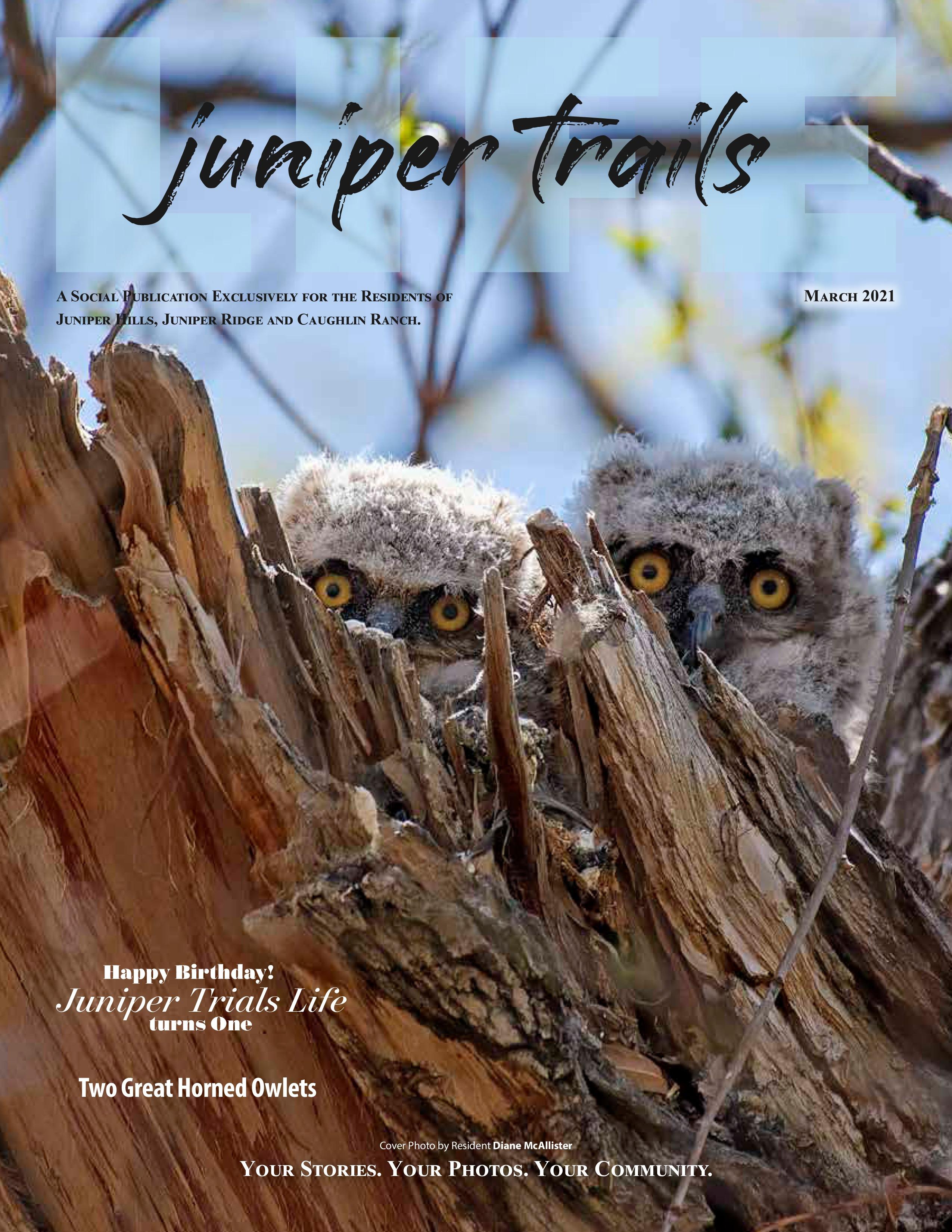 Juniper Trails 2021-03-01