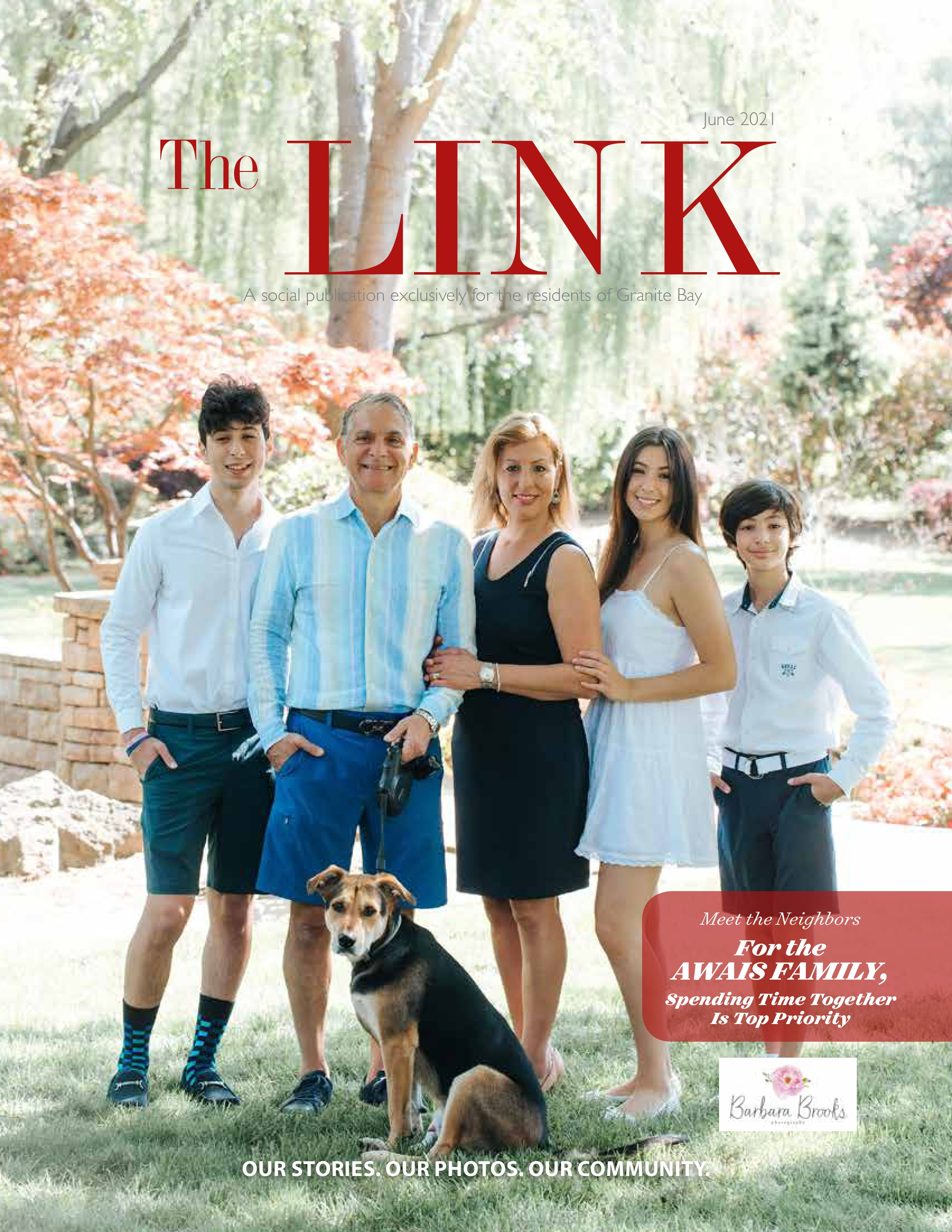 The Link 2021-06-01