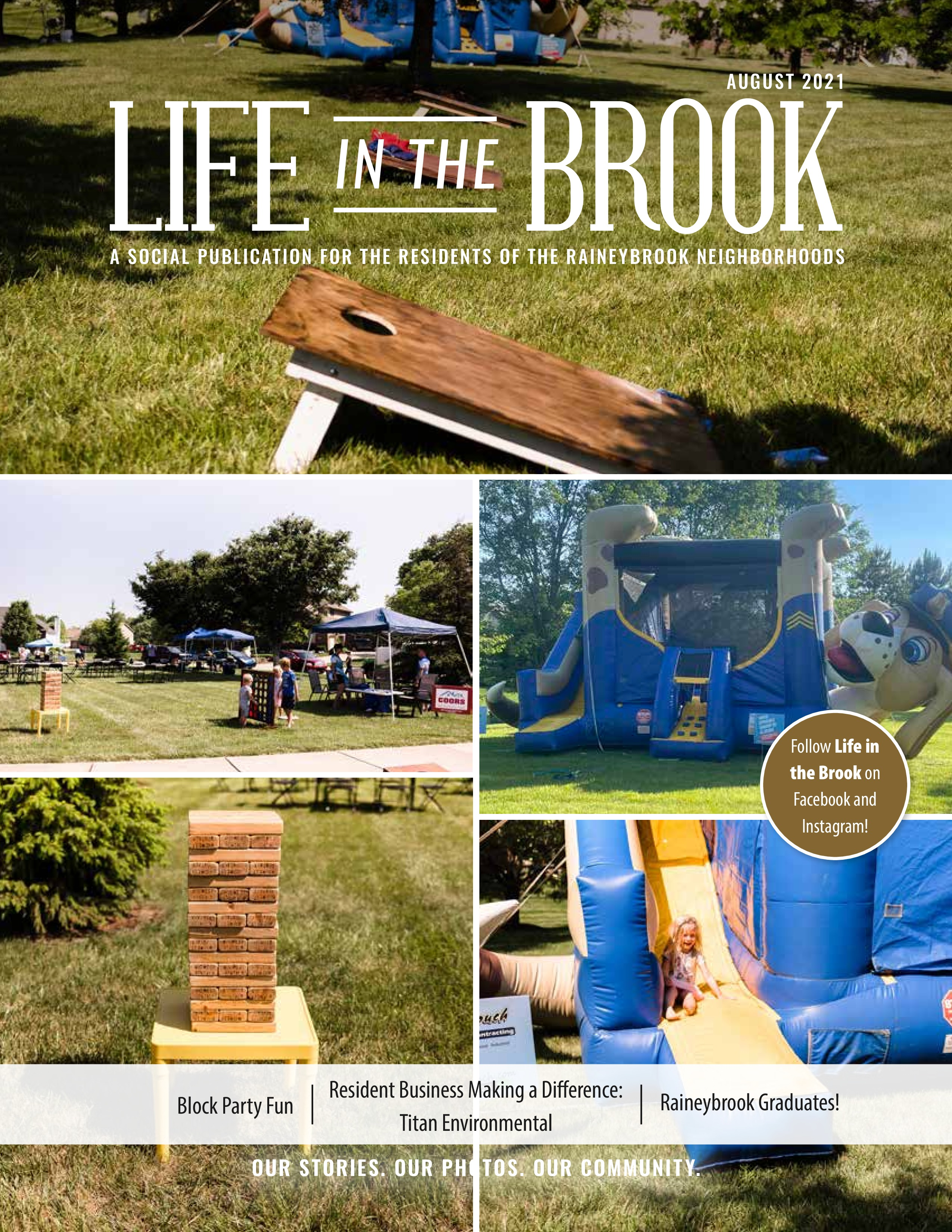 Life in the Brook 2021-08-01