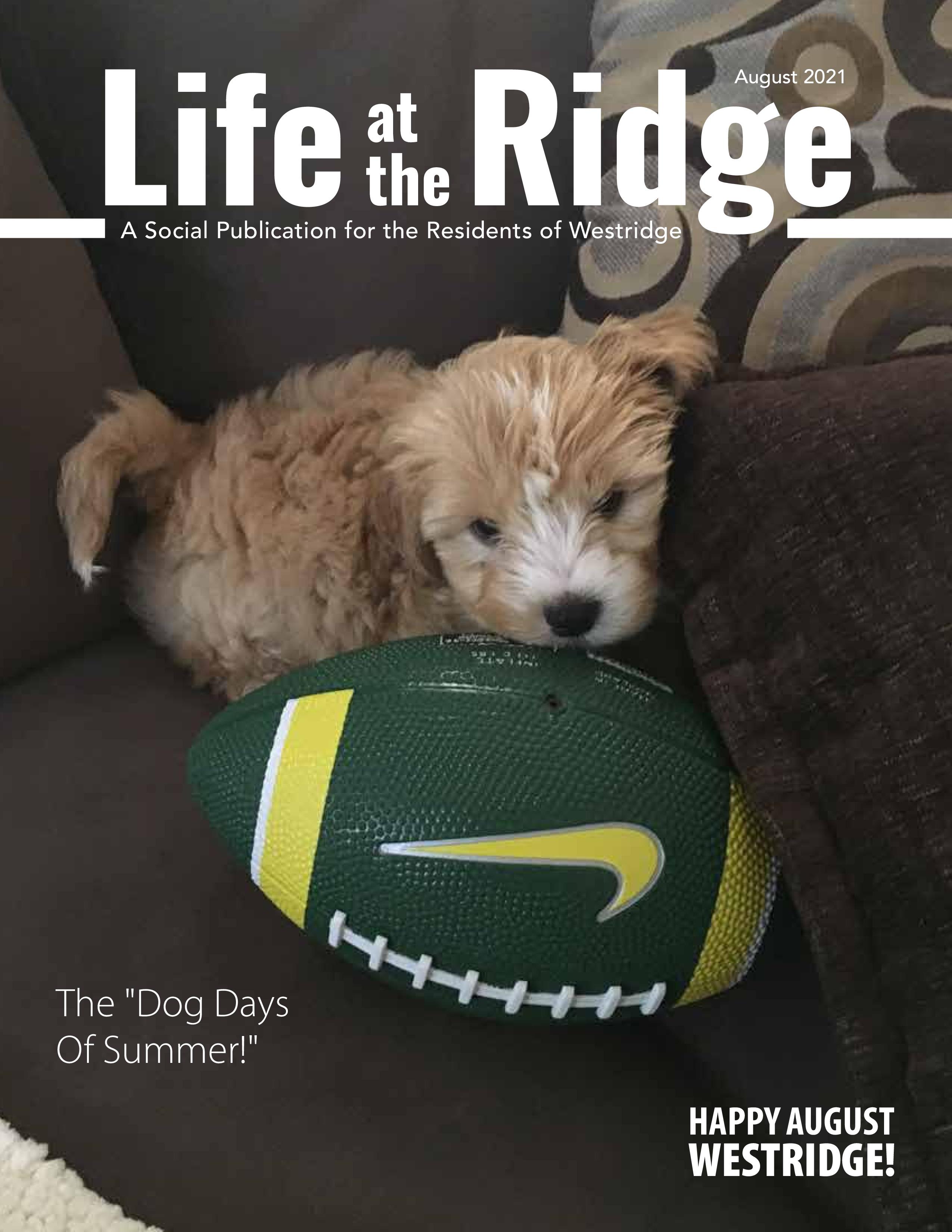 Life at the Ridge 2021-08-01